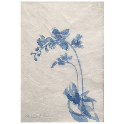 Blue Orchid 1